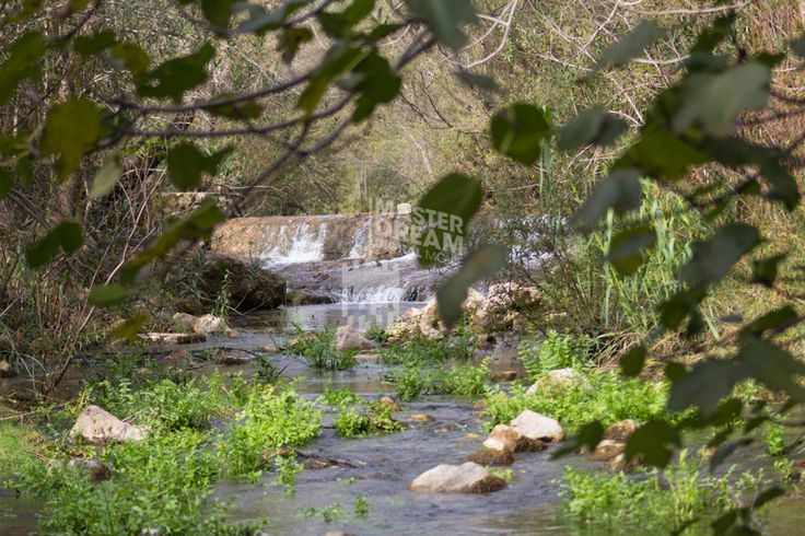 Mais uma sugestão de um belo cenário natural aqui, em pleno Algarve / Another suggestion of a beautiful natural set, right here in Algarve