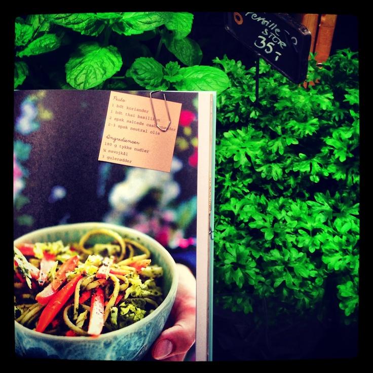 Nudler svøbt i asiatisk pesto. Velsmagende nudelsalat med koriander og thai-basilikum. Få flere opskrifter på sunde og farverige salater, og smugkig i Ditte Ingemanns nye kogebog SALATER FRA THE FOOD CLUB (klik på billedet).