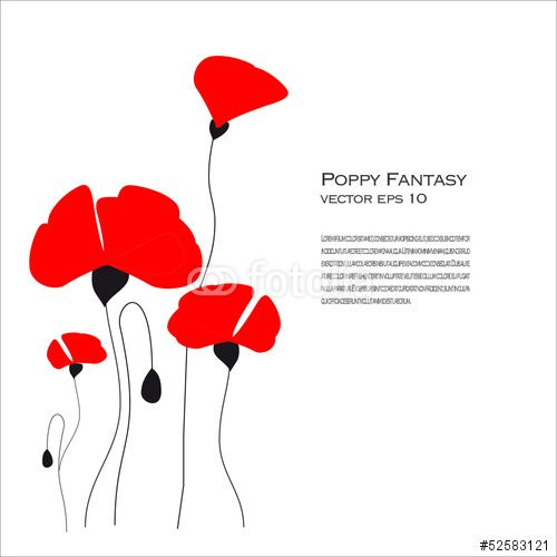 Vector: Poppy Fantasy Vector Illustration
