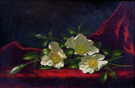 Мартин Джонсон Heade Натюрморт с чероки Розы 1883-90