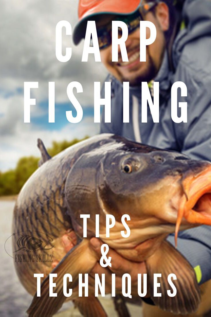 This Is A Great Article From Fishingskillz Com That Is Crammed Full Of Carp Fish Carp Fishing Tips Carp Fishing Carp Fishing Rigs