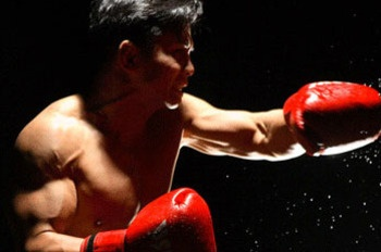 Cung Le. one of the 8 Best Pure Martial Artists in MMA