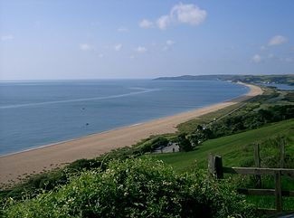Slapton Sands was the location for a D Day rehearsal with tragic consequences. Michael Morpurgo's book 'The amazing story of Adolphus Tips' explores the impact on a local family and their cat.