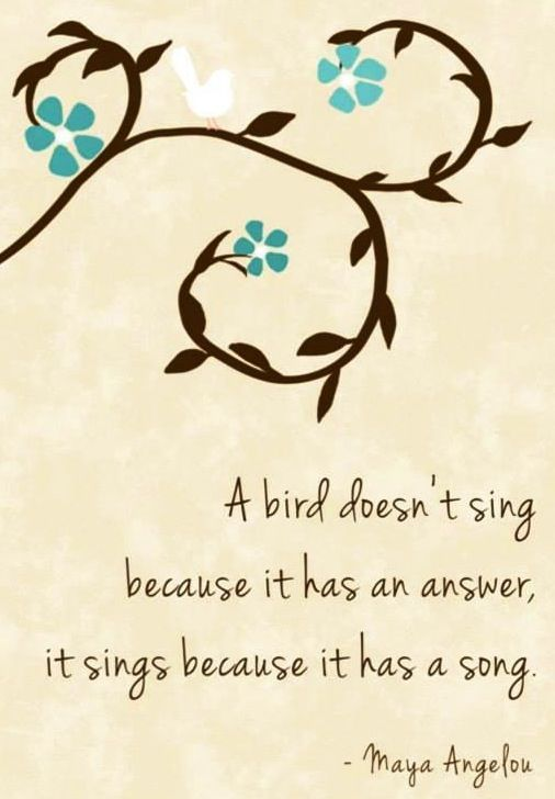 13 best images about music quotes on Pinterest | The birds, My ...