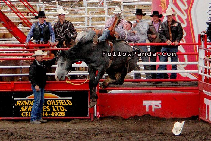 Wild Angry Horse Riding at Teepee Creek Stampede Rodeo Event - County of Grande Prairie, Alberta, Canada | FollowPanda.Com