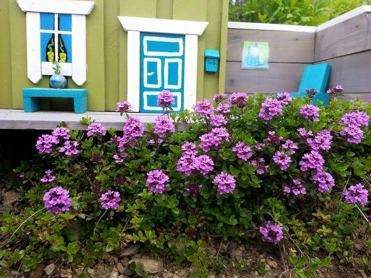 "Bloming ""roses"" in Kasfjord City - Minibyen"