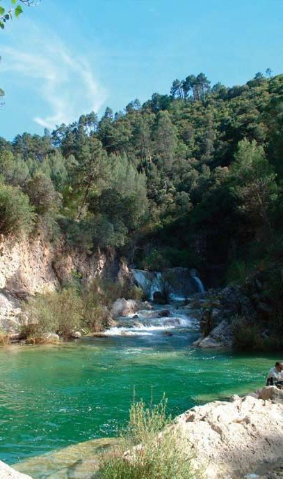 El río Borosa, un bello paraje de la sierra de Cazorla (Jaén) (Foto Archivo Entropía www.entropia.es) www.andalucia.org http://revista.destinosur.com/contenidos57.php#agua  http://www.turismohumano.com/boletines/106.html