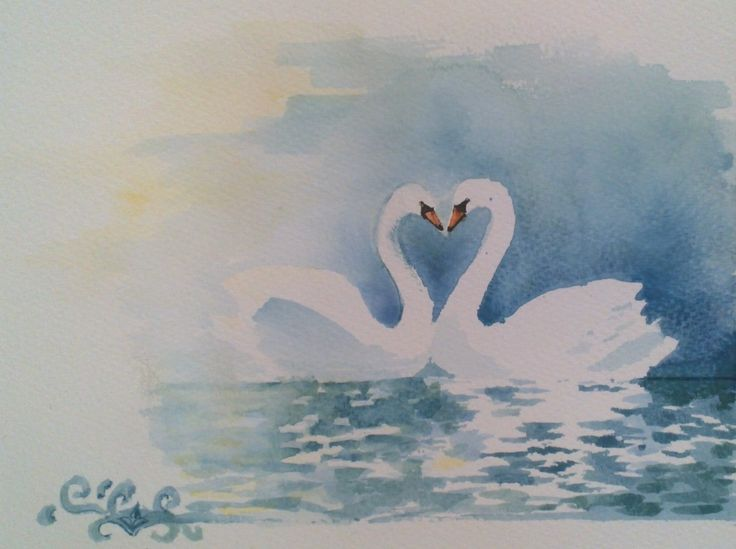 Loving swans aquarelle
