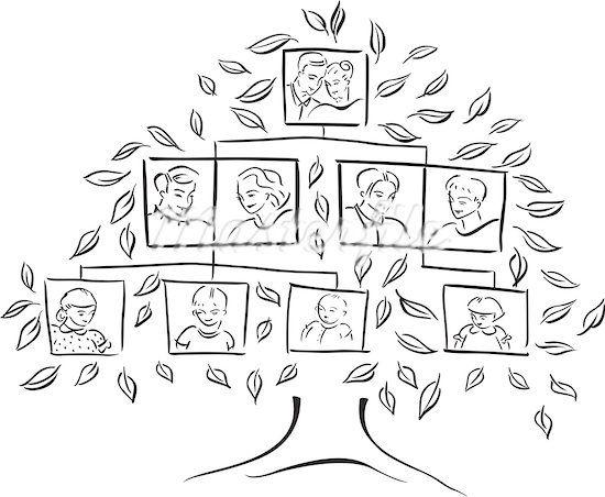 12 best Family Tree Ideas for Kids images on Pinterest