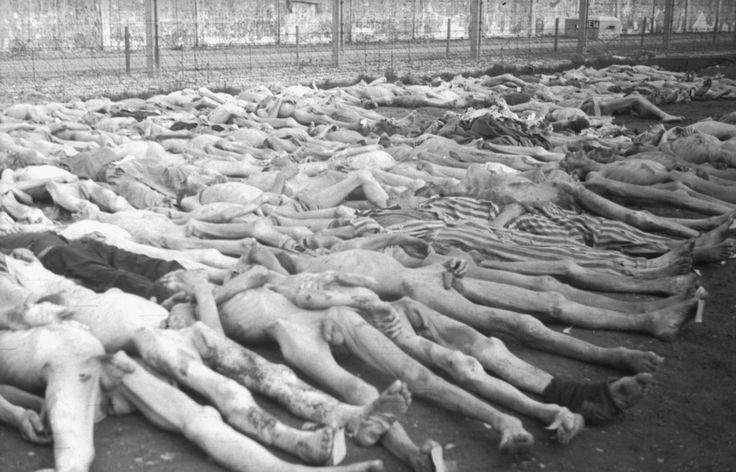 Cadavres de détenus au camp de concentration de Dachau en Allemagne ...