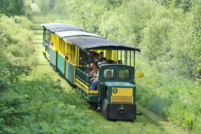 There's A Magical Trolley Ride In Michigan That Most People Don't Know About