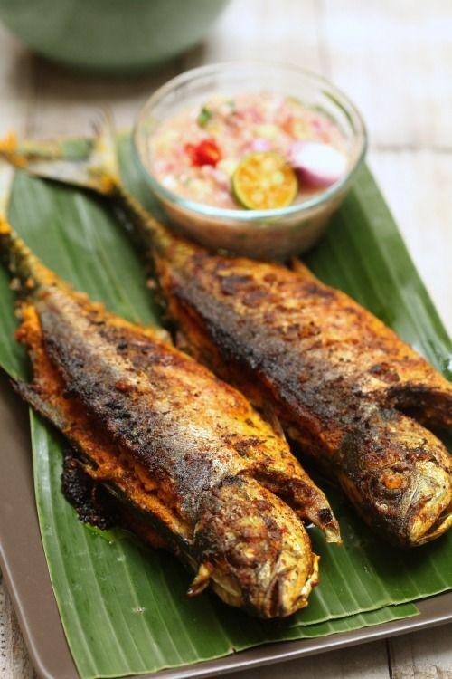 Ikan cencaru adalah spesis ikan yang kulitnya agak tebal. Biasanya ikan ni sedap kalau di bakar. Bapa ita cukup suka kalau ikan caru baka...