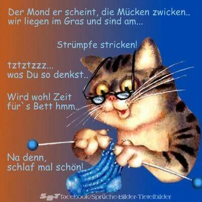 gute nacht Freunde , bis morgen - http://guten-abend-bilder.de/gute-nacht-freunde-bis-morgen-44/
