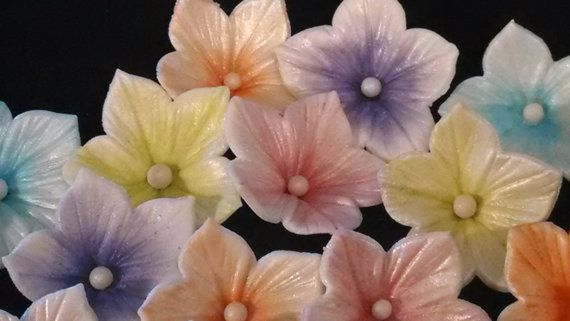 Hey, I found this really awesome Etsy listing at https://www.etsy.com/listing/194285197/24-edible-gum-paste-blossom-flowers