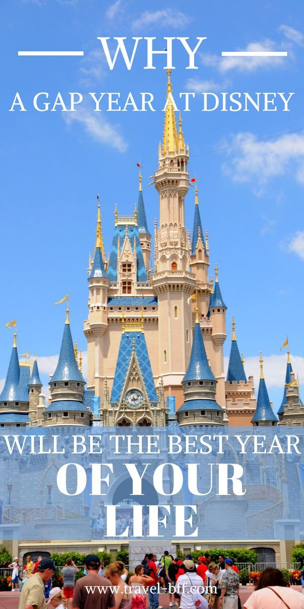 Best Work Abroad Program Cultural Representative At Walt Disney World Working Abroad Programs Work Abroad Disney College Program