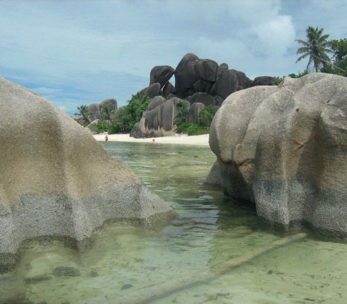 A Taste of Paradise. http://www.airserbia.com/en/home/main_menu/travel_info/airserbia_review/maj_2014/seychelles_ar_05_2014.html