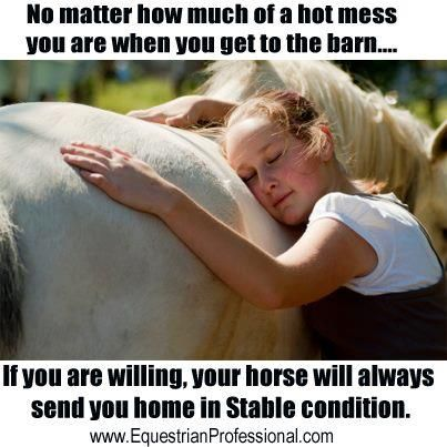 No matter how much of a hot mess you are when you get to the barn... If you are willing, your horse will always send you home in Stable condition.