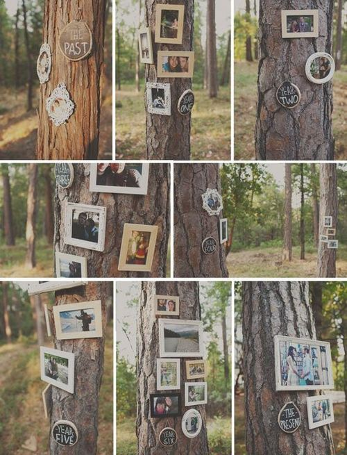 Pictures of the couple hanging on trees leading to the reception.