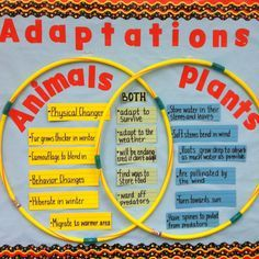plant and animals adaptations venn diagram - Google Search