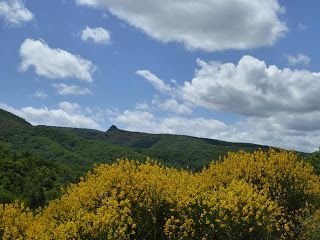 Another day, another walk: Les Aires, Near Herepian, Herault.