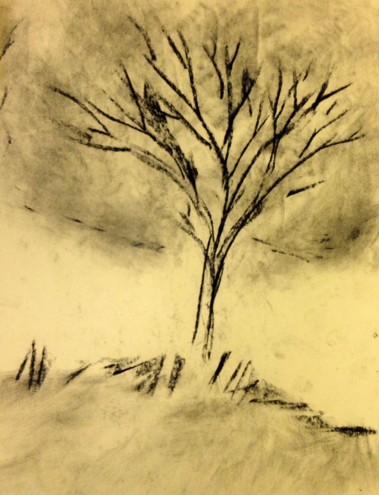 """""""30 Second Tree"""" by S. Lawson (c) 2012. compressed charcoal. 8 x 10."""