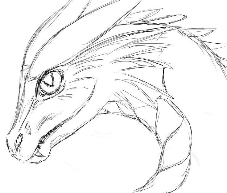 gezeichneter drachenkopf  drachen  dragons  pinterest