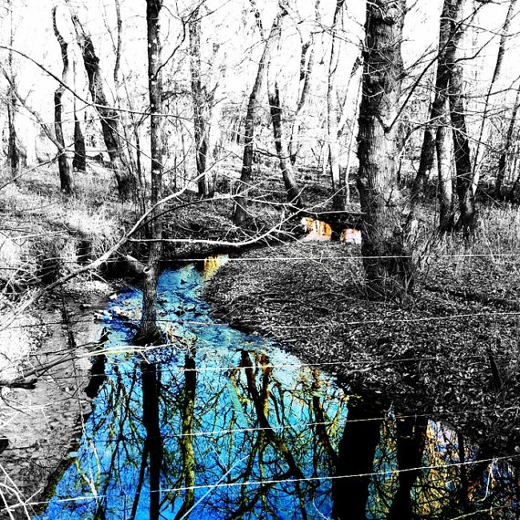 Creek color splashed · splash photographycolor photographyblack and white