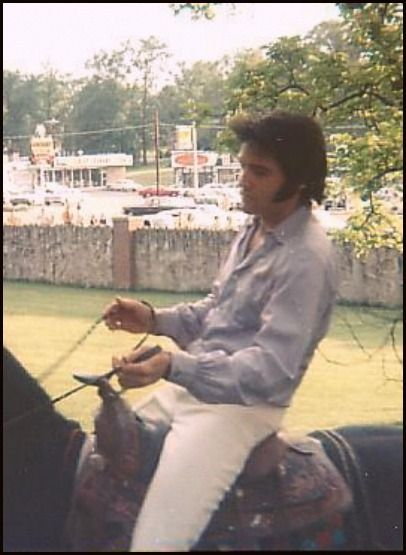 {*Elvis~ Riding on the horse he bought Priscilla's Ebony At Graceland*}
