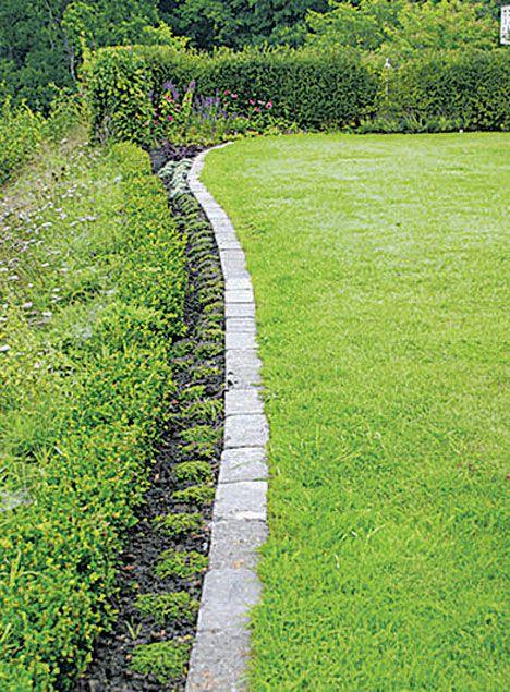 gräsmatta kant