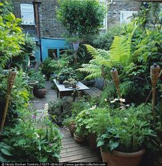 Beautiful urban landscaping taking advantage of all available space