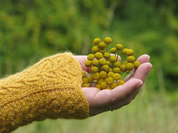 Knitted Fingerless Gloves Yellow Ochre by AGirlNamedMariaDK on Etsy #gloves #glove #mittens #mitten #wrist #wrists #warmer #warm #warmers #knit #knitting #knitted #knitwear #handmade #victorian #lace #intricate #feminine #girly #women #womens #woman #girl #girls #fashion #accessory #accessories #gift #idea #ideas #gifts #etsy #agirlnamedmariadk