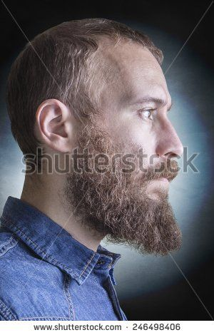 stock-photo-portrait-of-the-profile-of-a-bearded-blonde-man-246498406.jpg (300×470)