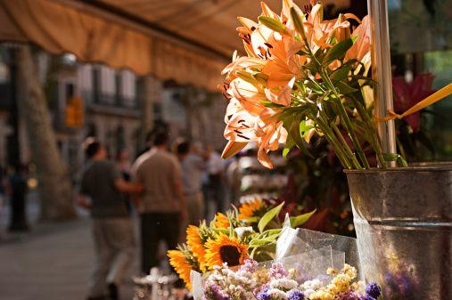 Immergersi nei mercati di fiori di tutto il mondo: è primavera! #Barcelona Immergersi nei mercati di fiori di tutto il mondo: è primavera! #India #flowersmarket #mercatodeifiori #people #persone #market #mercato #colour #colori #fiori #flowers #fiore #flower #hand #work #job #lavoro #manuale #spring #primavera #world #flowersmarketoftheworld #Barcellona #spain #spagna