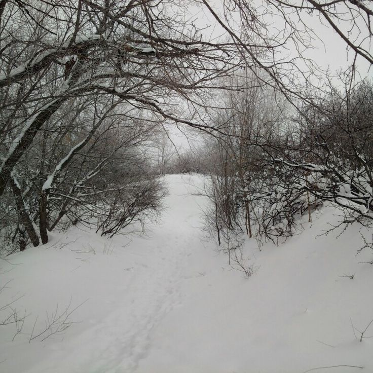 My Photo: Russia, Saratov city, Sokolovaya Gora /  Falcon Hill, 3 February 2018, 12:50-13:00 PM.