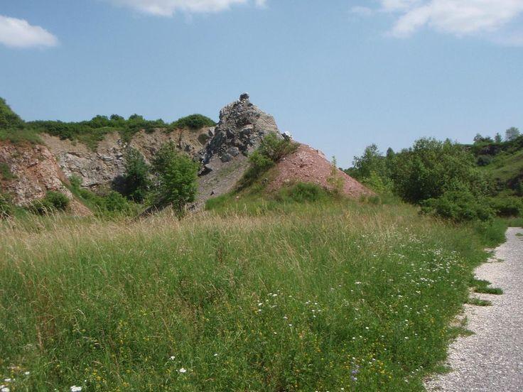 https://pl.tripadvisor.com/Attraction_Review-g274770-d5074763-Reviews-Wietrznia_Nature_Reserve_Rezerwat_Przyrody_Wietrznia-Kielce_Swietokrzyskie_Provin.html