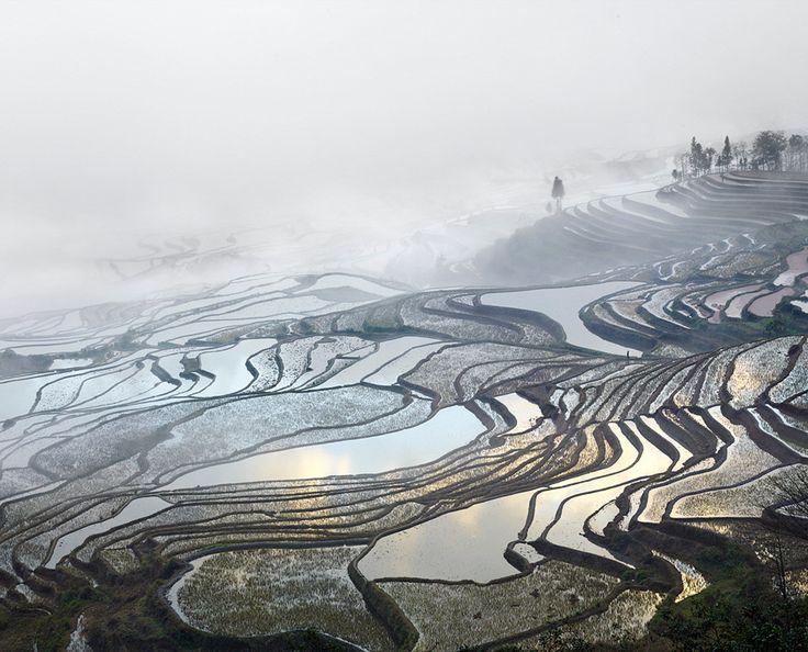 David Burdeny, 'Rice Terraces, (Duoyishu), Yunnan, China'