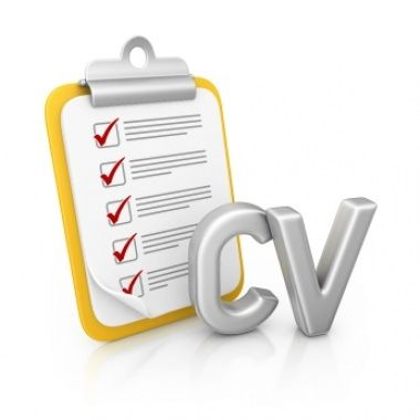 Best 25+ Cv writing service ideas on Pinterest Cv services - how to start a resume writing service
