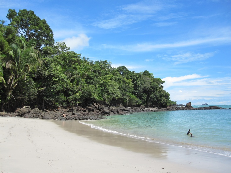 Manuel Antonio National Park: local tour guides will take you through the park. I would definitely recommend this we wouldn't have seen half of the wildlife if not for him :)