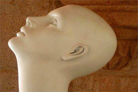 Foto zum Beitrag: Schutz für empfindliche Ohren