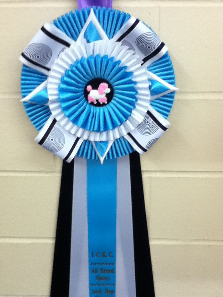 Rosettes we made for ICKC's Sock Hop.