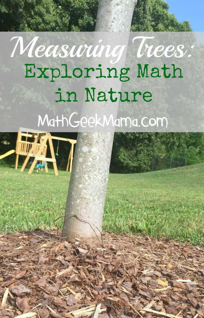 Exploring math using engaging children's literature and the world outside in nature. Lots of fun ideas!