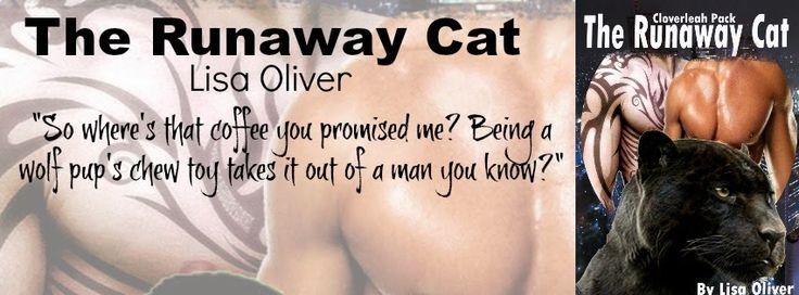 Spreading The Word With Denise&Donna: Runaway Cat By Lisa Oliver  Blog tour  1/11/15