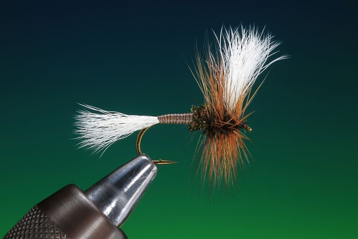 Heres an American Classic to tie and try over the holidays. The H & L or House and Lot as it is also known was said to be President Dwight Eisenhower's favorite trout pattern, especially …