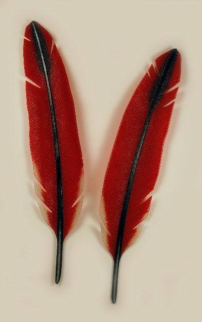 """CARDINAL, 2010; kiln formed glass, pair, 40""""H X 24""""W, Michael Dupille"""