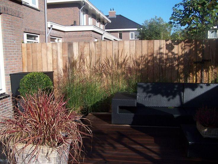 Mooie grassen tegen een houten  schutting