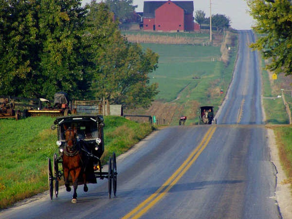 Anglican Journal: In U.S., Amish report staggering growth