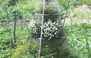 Planning A White Garden | Proven Winners