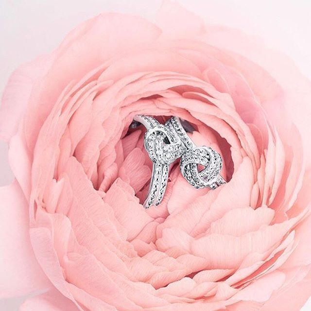 The PANDORA Love Knot ring symbolises friendship, love and the bonds between two people. Add this sparkling ring to your collection this Valentine's Day. #loveargento #PANDORA .  .  .  .  #ring #pandoraring #rings #pandorajewellery #argentojewellery #love #jewellery #details #ukblogger #fblogger #style #accessories #fashionblogger #ootd #flatlay #silver #valentine #heart #sparkle #pastel #pink #vday #rose #peony #flower #floral #knot