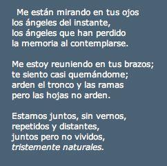 Poema de Luis Rosales, autor de la Literatura Contemporánea.
