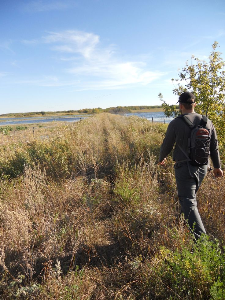 Exploring the Railbed from Middle Lake to Pilger #lucienlake #middlelake #pilger #railbed #adventurewalk